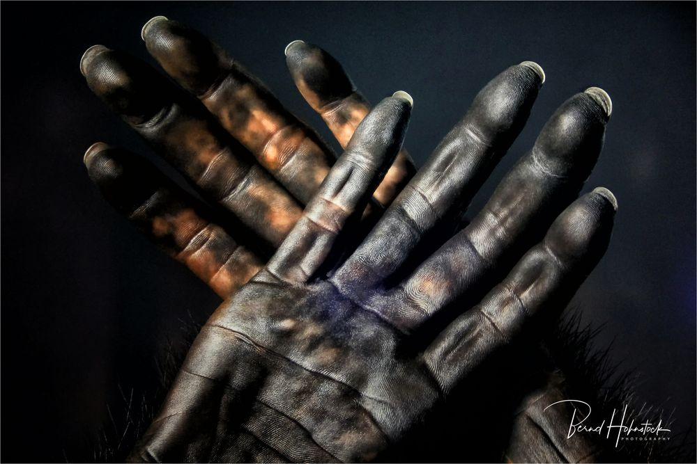 Dirty Hands ....