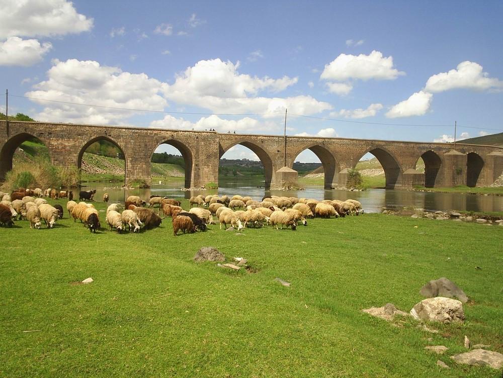 Diyarbakir-OnGozluKopru-Bridge-2005-04-29
