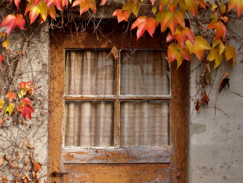 ......doch noch ein Herbstbild