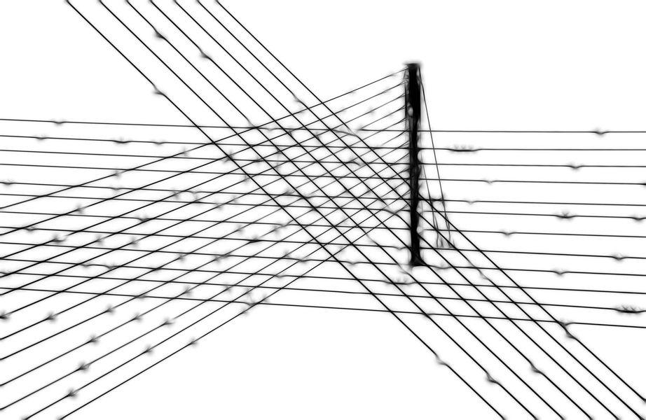Documenta Lines