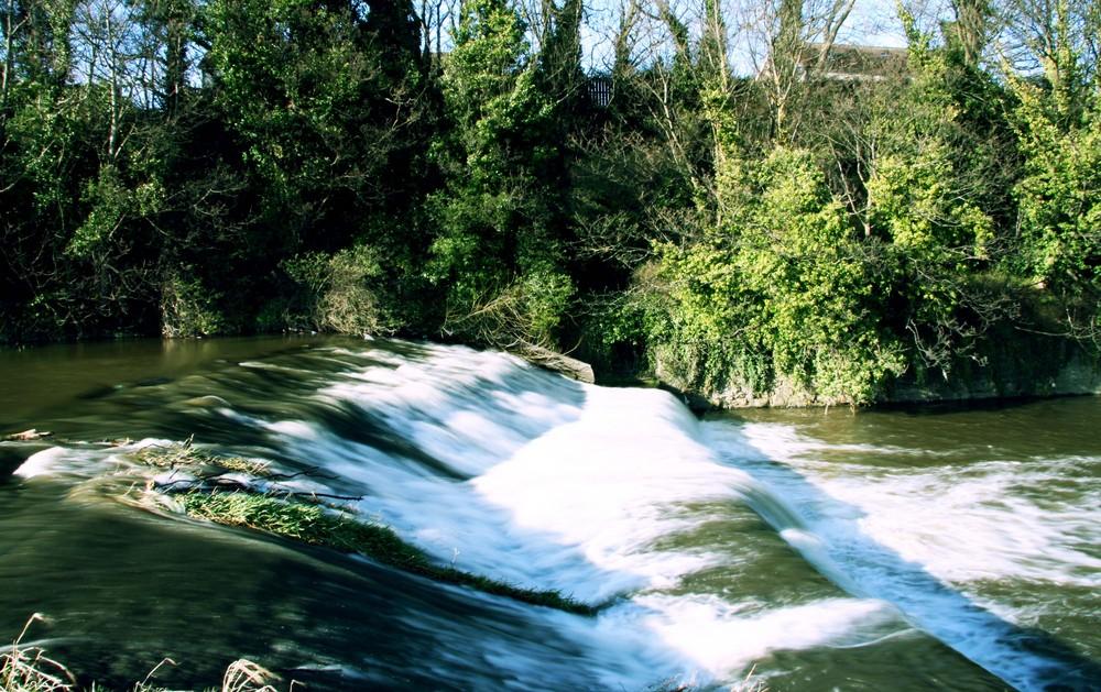dodder river-dublin
