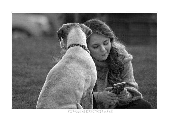 Dog and Phone