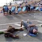 Dog-tired & broke at the Seaside