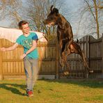 Dog(gen) dance