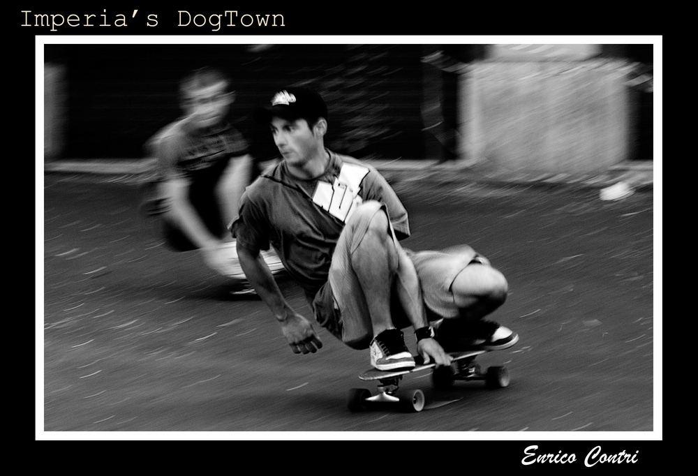 DogTown (crop2)