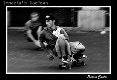 DogTown (crop2)