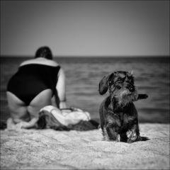 Dogy-Style ...