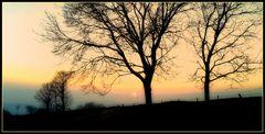 Dolce e nostalgico ritorno al tramonto... 4