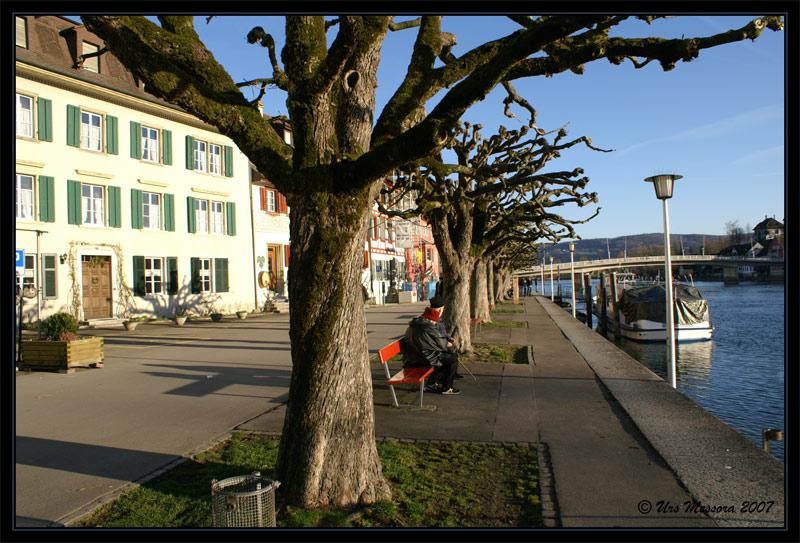 Dolcevita am Rhein