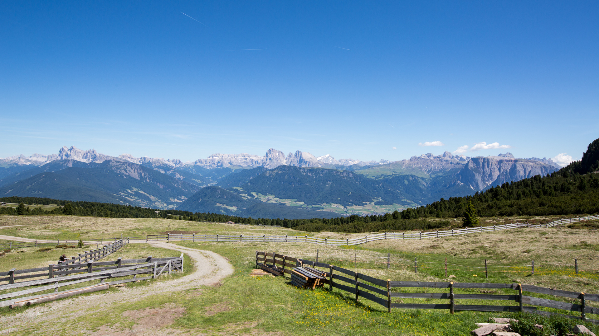 Dolomiti View