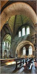 DOM Münster