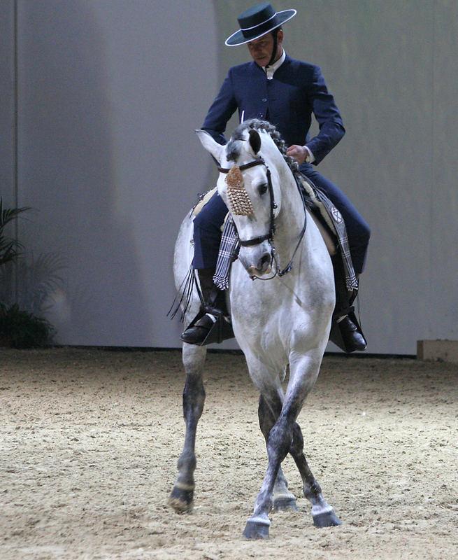 Doma Vaquera Reiter im Tagesprogramm der Equitana...