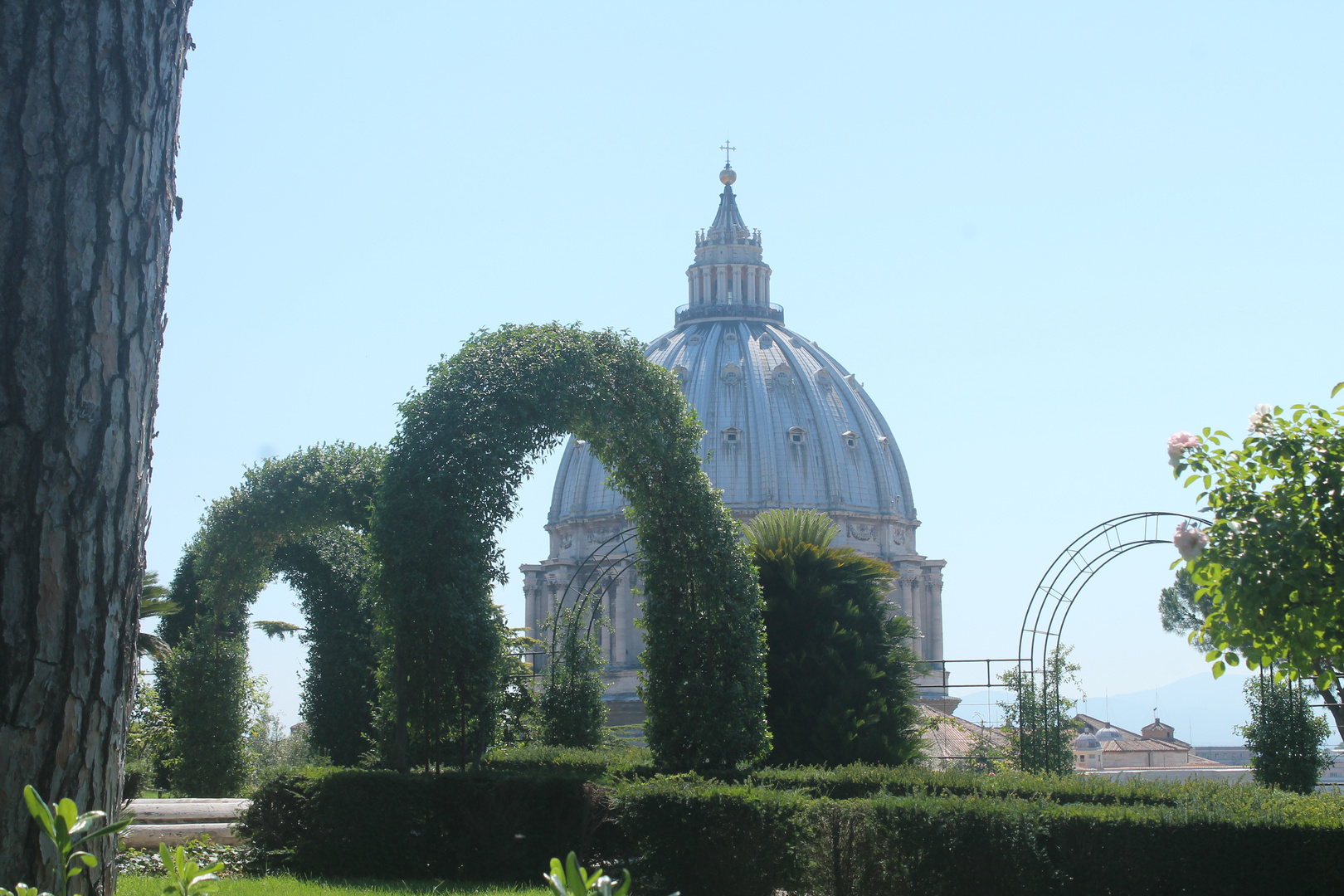 Dome seen from Vatican Garden