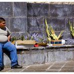 °°°Domenica delle Palme 16/03/2008°°°