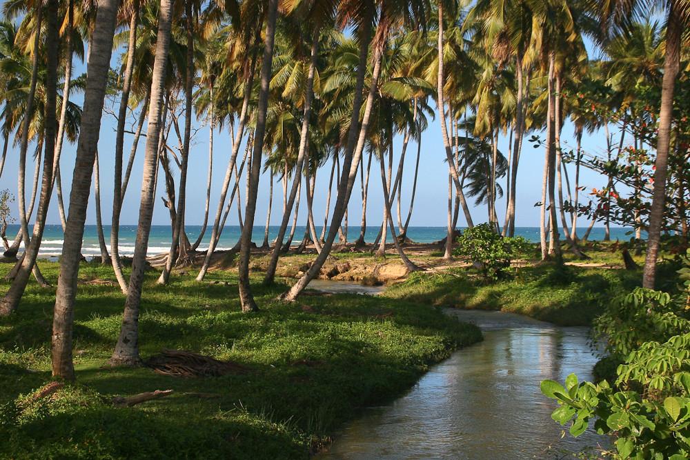 Dominikanische Republik - Halbinsel Samana (25)
