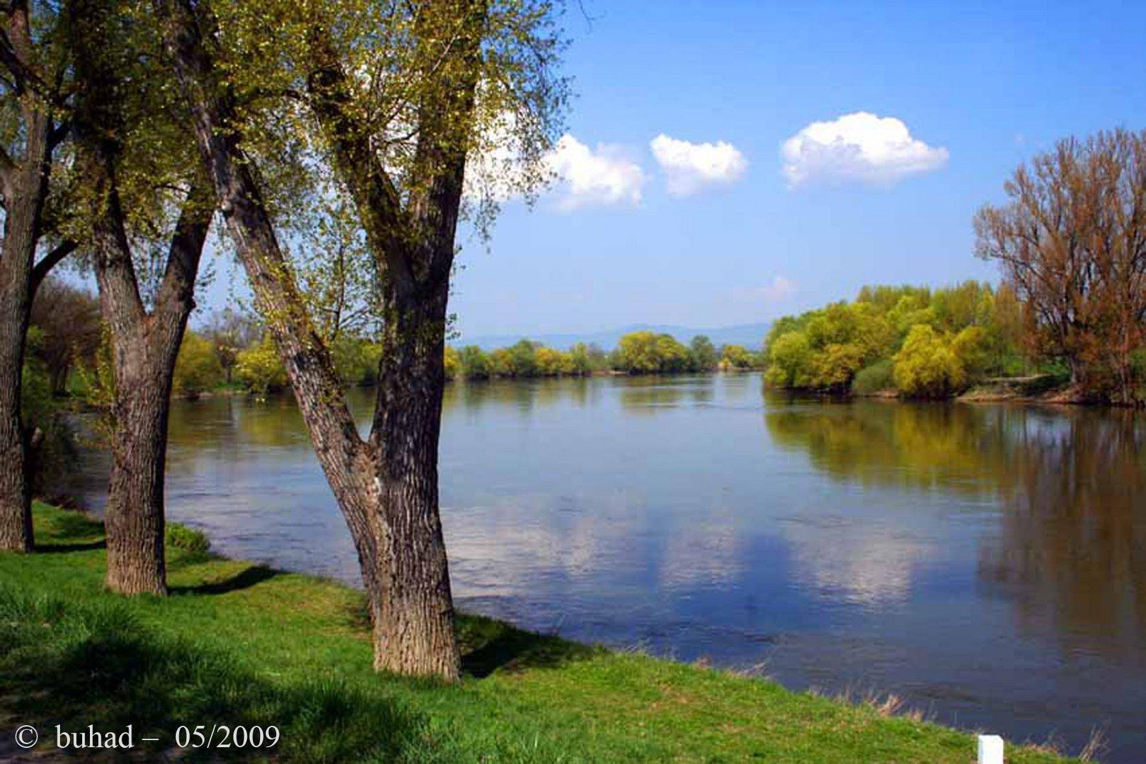 Donau bei Straubing