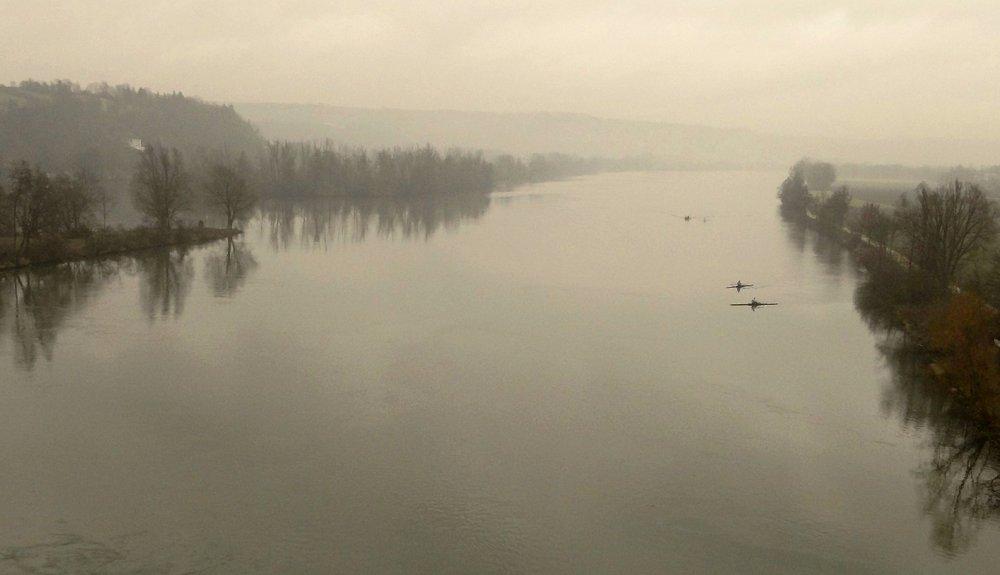 Donau-Ruderer