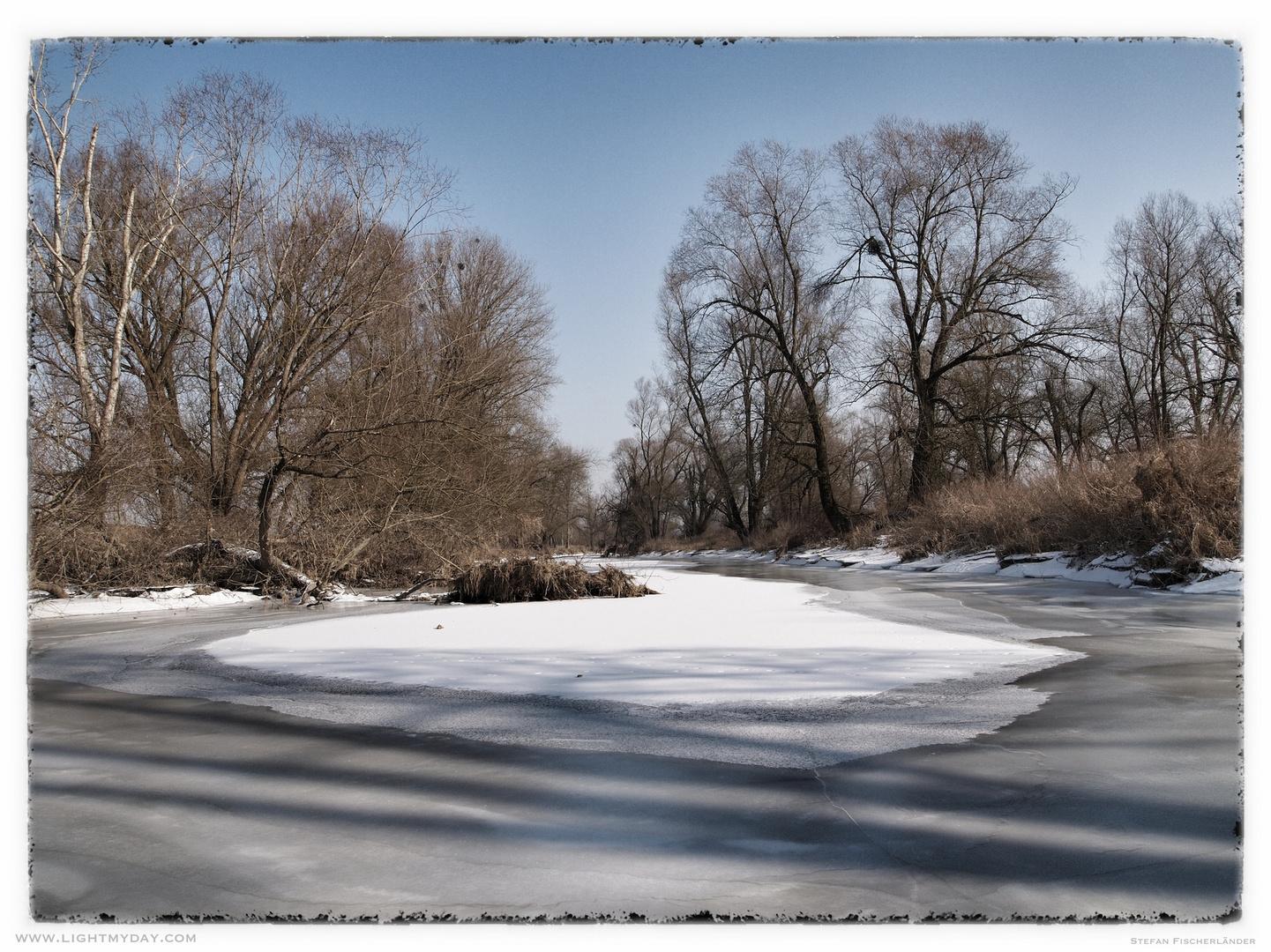 Donaualtwasser im Winter