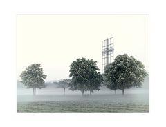 Donaupark im Nebel