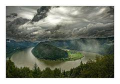 Donauschlinge bei Schlögen