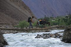 Donkeys of the Pamir IX