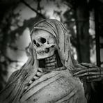 Don't Fear the Reaper; wenn Du ihn siehst...auf dem Melaten