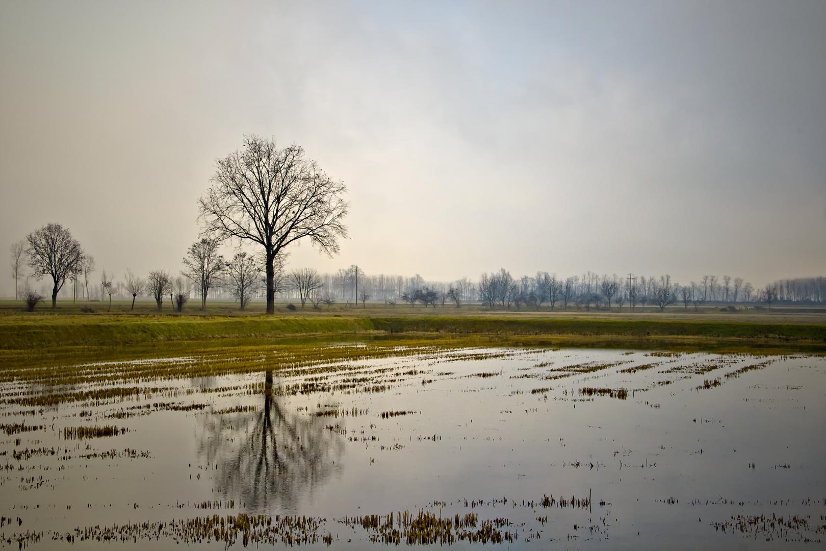 Dopo abbondanti piogge......