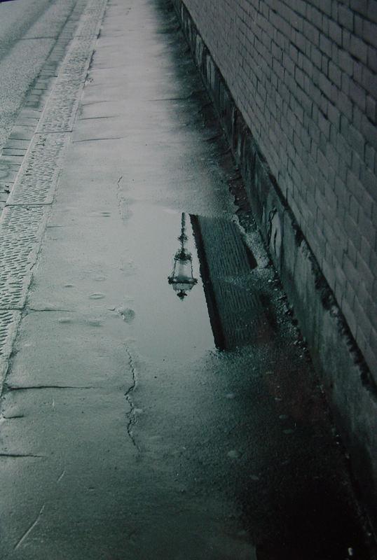 dopo la pioggia..