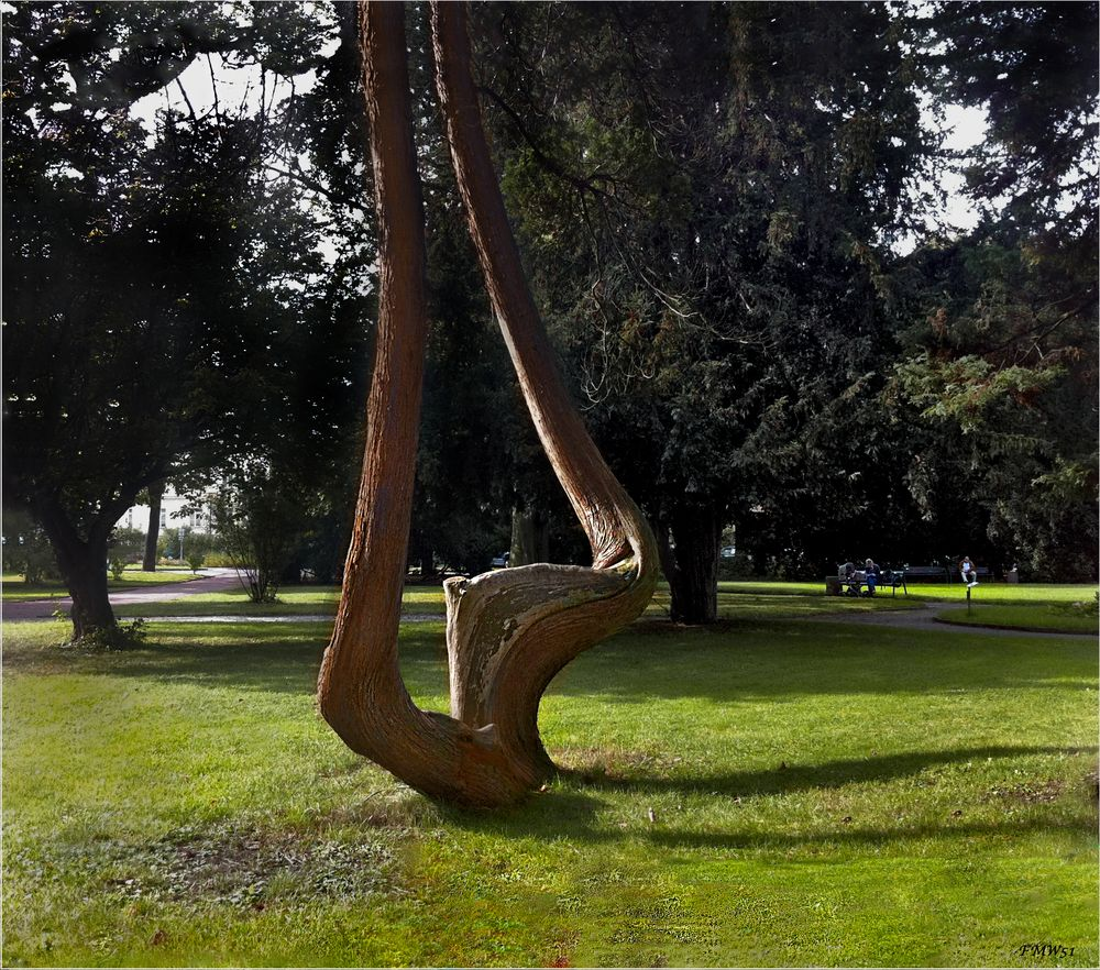 Doppel-Knick-Zwillings-Baum