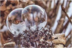 Doppelblase
