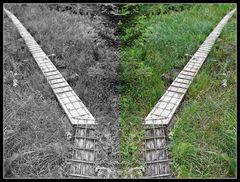 Doppelbretterweg