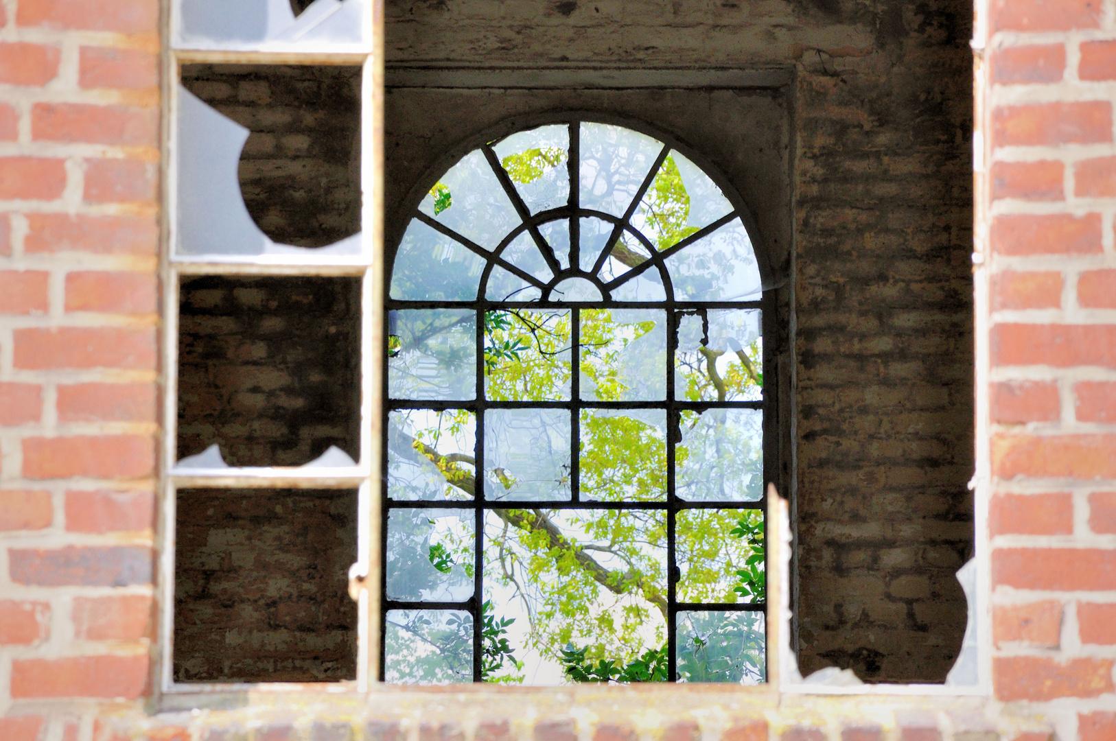 Doppelfenster in Nauen 2014