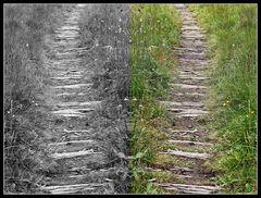 Doppelholzweg