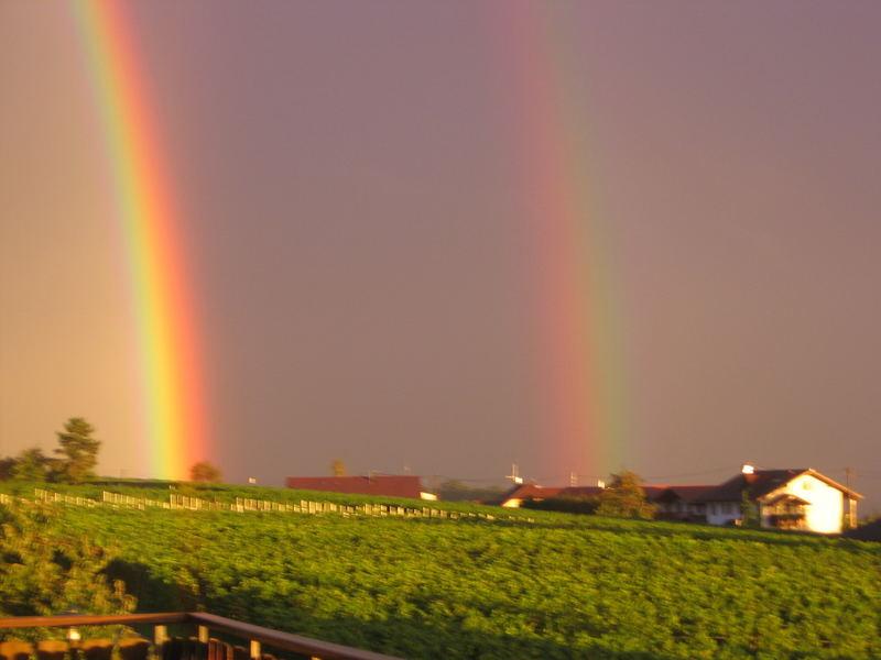 Doppelter Regenbogen am Bodensee