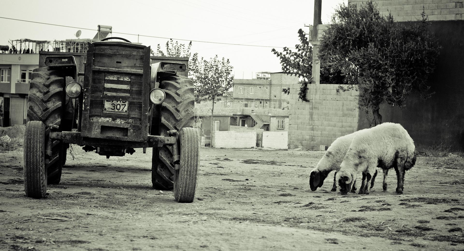 Dorf in der Türkei