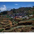 Dorf zwischen Dieng und Wonosobo