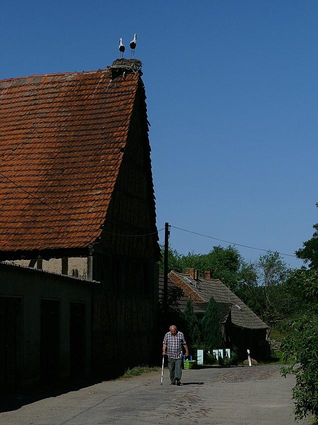 Dorfidyll in Werben / Elbe