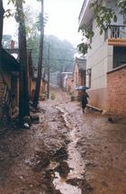 Dorfstrasse im Regen