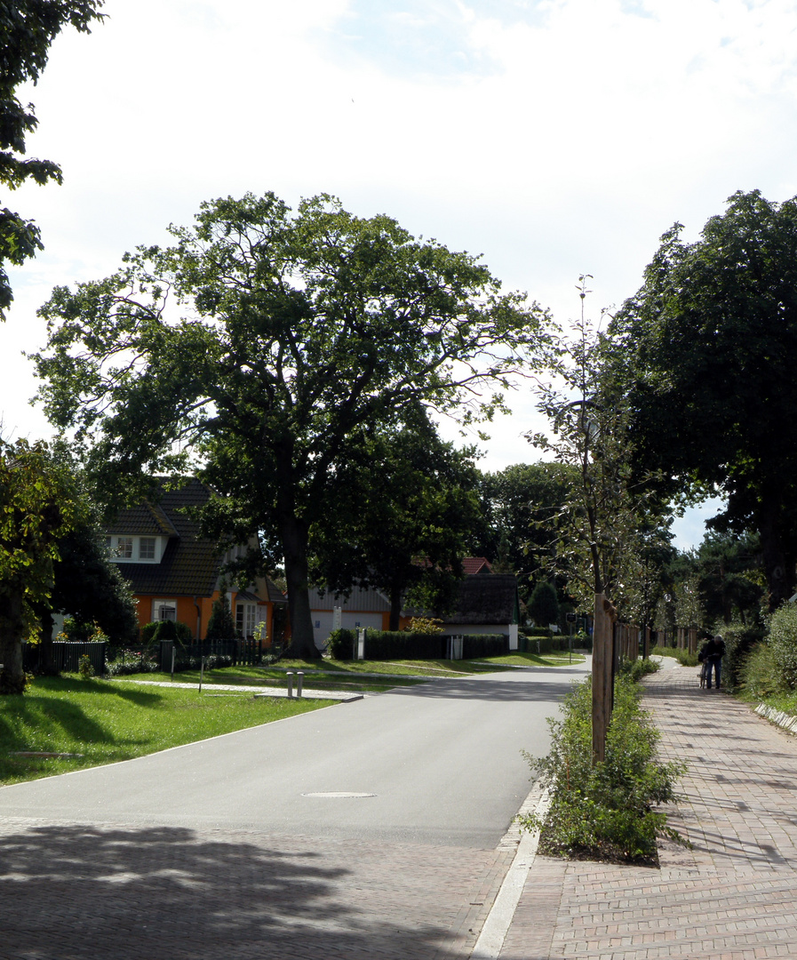Dorfstraße in Wieck/Darß