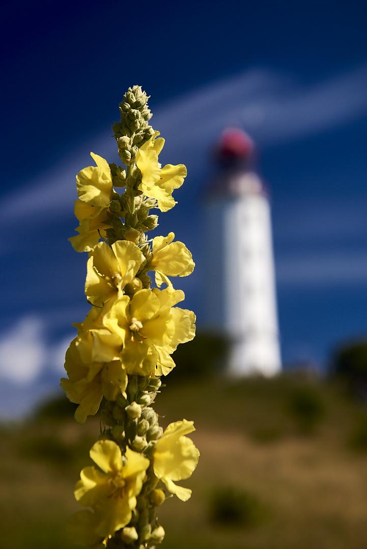 Dornbusch Leuchtturm, Hiddensee