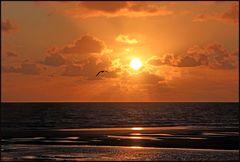 ...dort zu steh´n, im goldenen Licht... (keine Fotomontage, s. Diskurs)