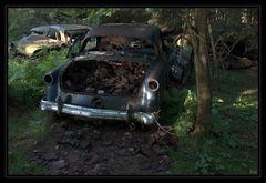 Dosenfutter für Oldies - im Tal der toten Autos