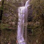 Double Falls In dem Silvercreek state Park Oregon