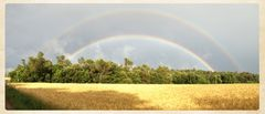 Double Rainbow Field