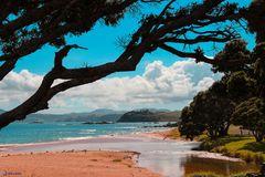 Doubtless Bay