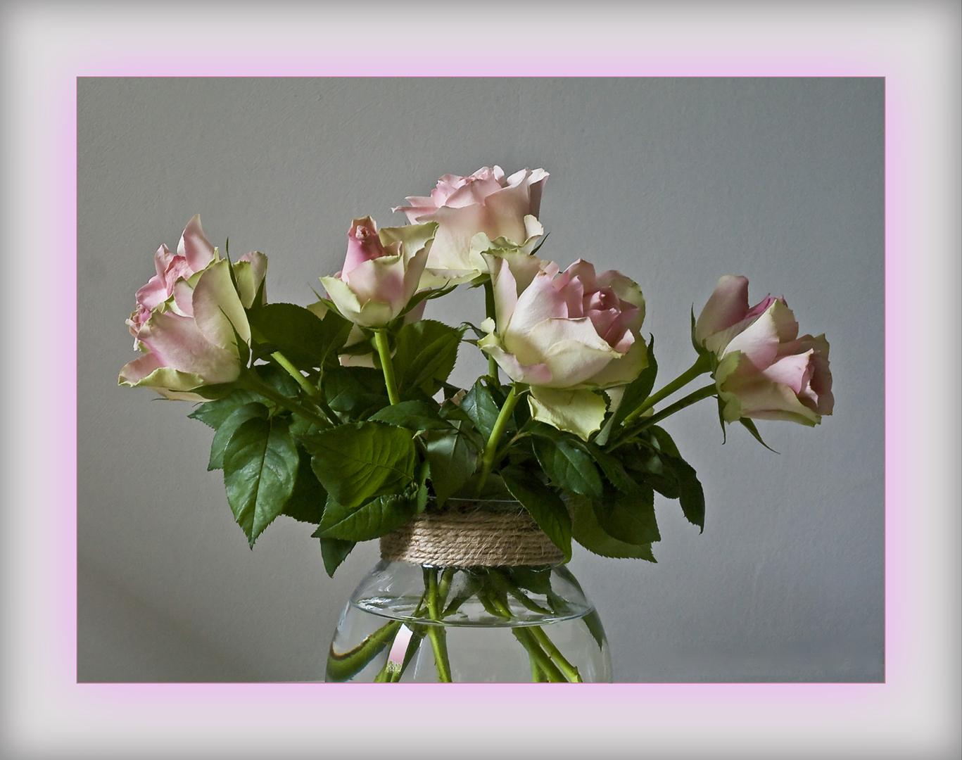 Douceur de roses roses