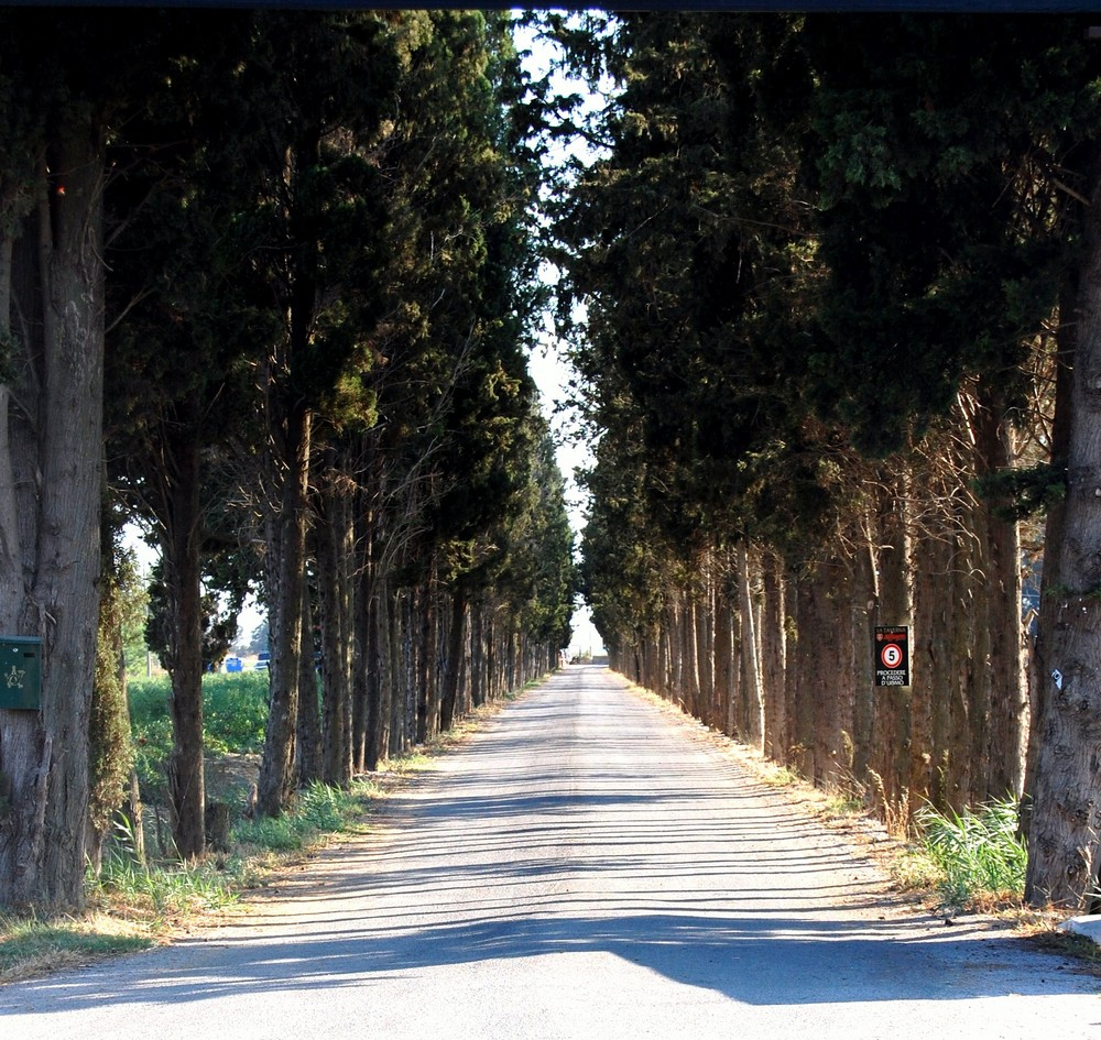 dove porta questa strada......