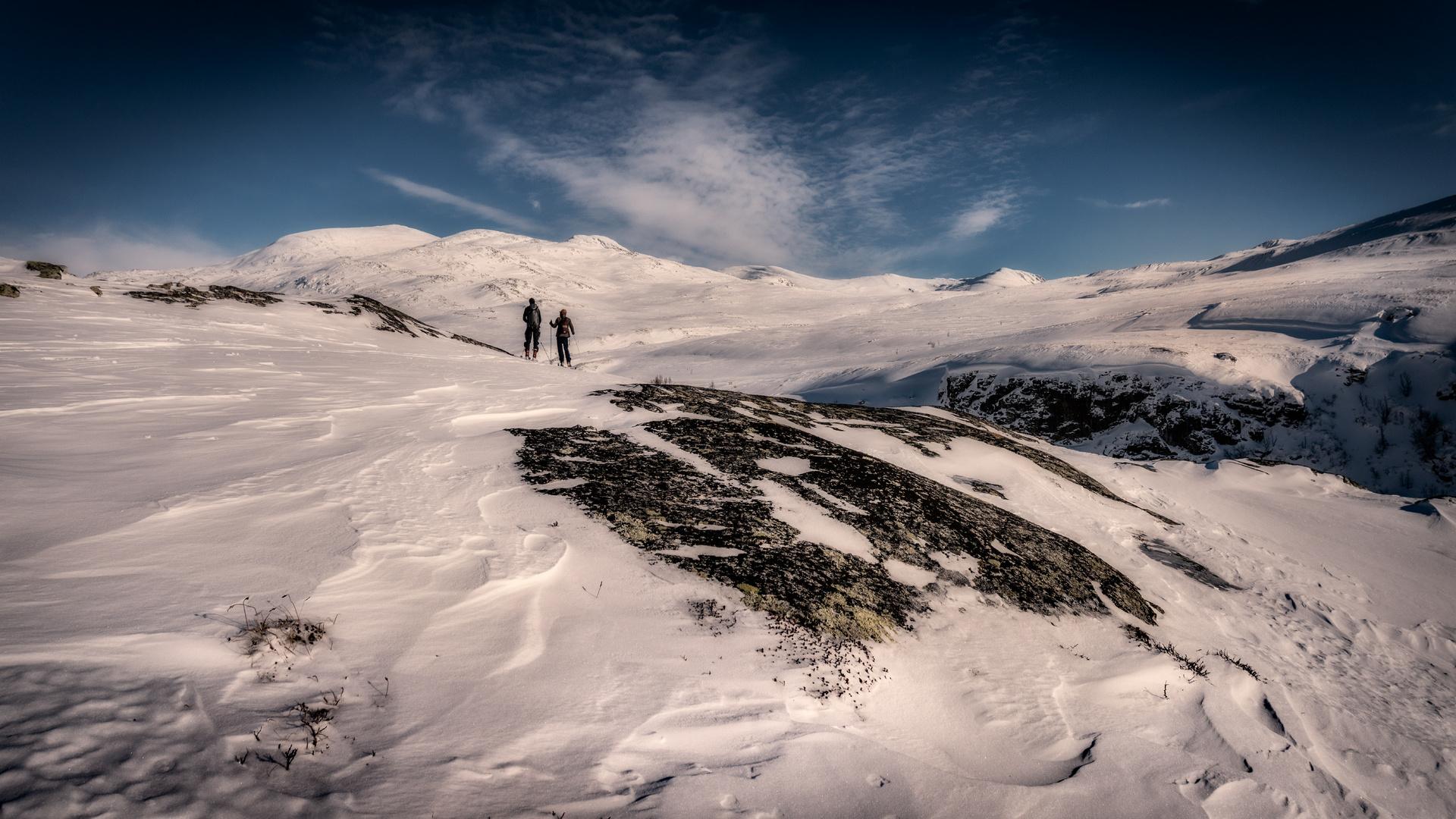 Dovrefjell & Sunndalsfjella