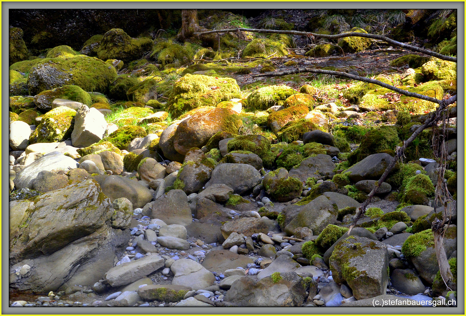 """""""Down-at the river II."""""""