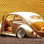 Down Beetle